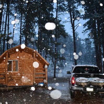 Glimpse of Winter