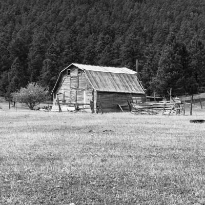 Black Hills Barn