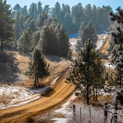Frosty Trails