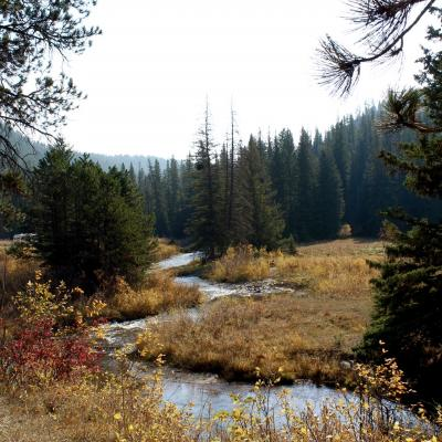 Fall on the Mickelson Trail