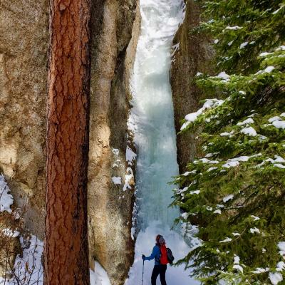Incredible Ice Flow in Custer State Park