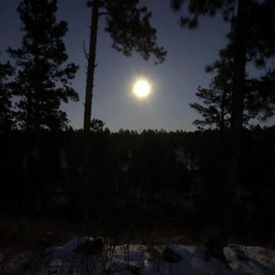 Black Hills Night Light