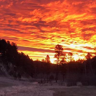 Morning Off Flynn Creek Road