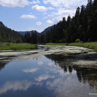 August Reflections - Spearfish Canyon Memories