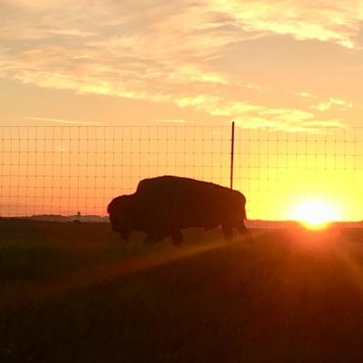 Sunrise in SD