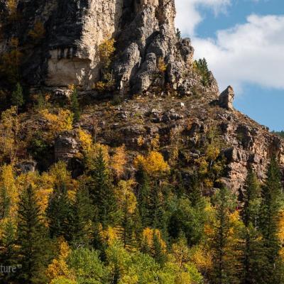 Vibrant Peaks