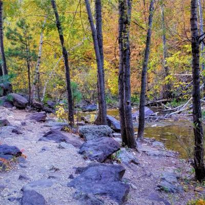Little Elk Creek Trail
