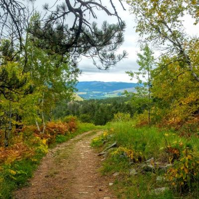 Trail to Mount Roosevelt
