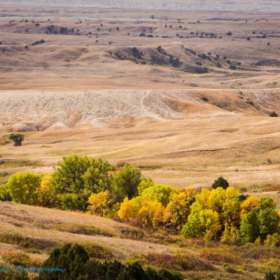 Fall Bliss in Badlands National Park