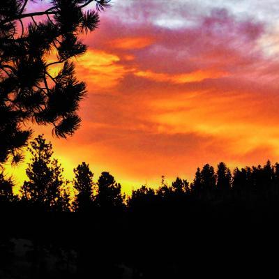 Sunrise in the Black Hills