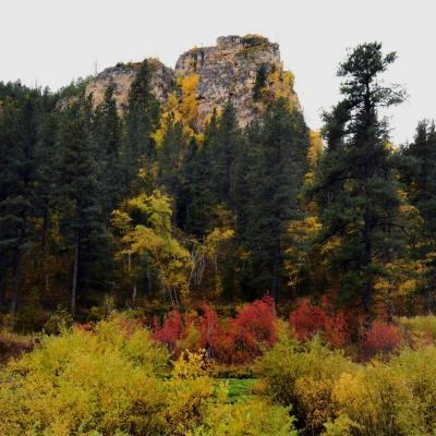 Fall in the Black Hills