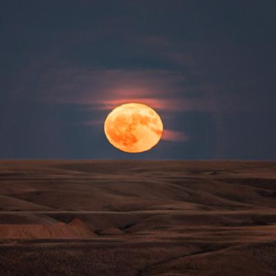 Halloween Night Blue Moon