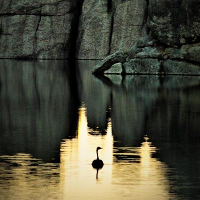 Sylvan Lake Farewell