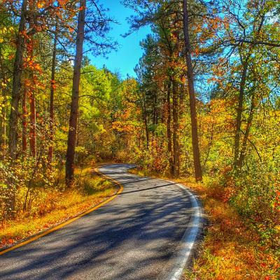 Autumn on Iron Mountain Road