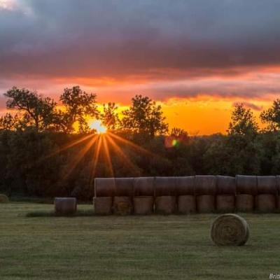 Sunset Near Whitewood
