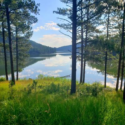 Summer at Sheridan Lake