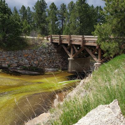 Black Hills Bridge