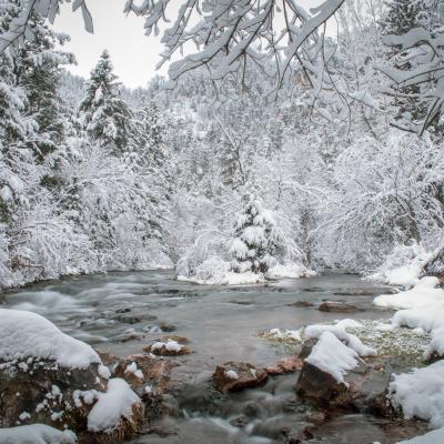 Canyon Winter Wonderland