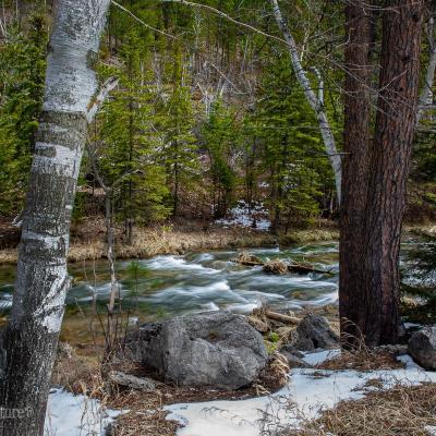 Snowy Streams