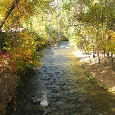 Spearfish Creek by the Fish Hatchery