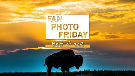 Fan Photo Friday | Best of 2019