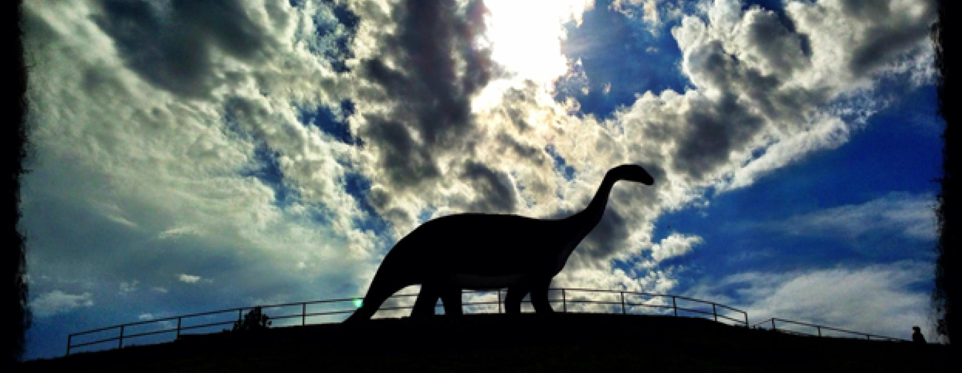 Up to the Top at Dinosaur Park