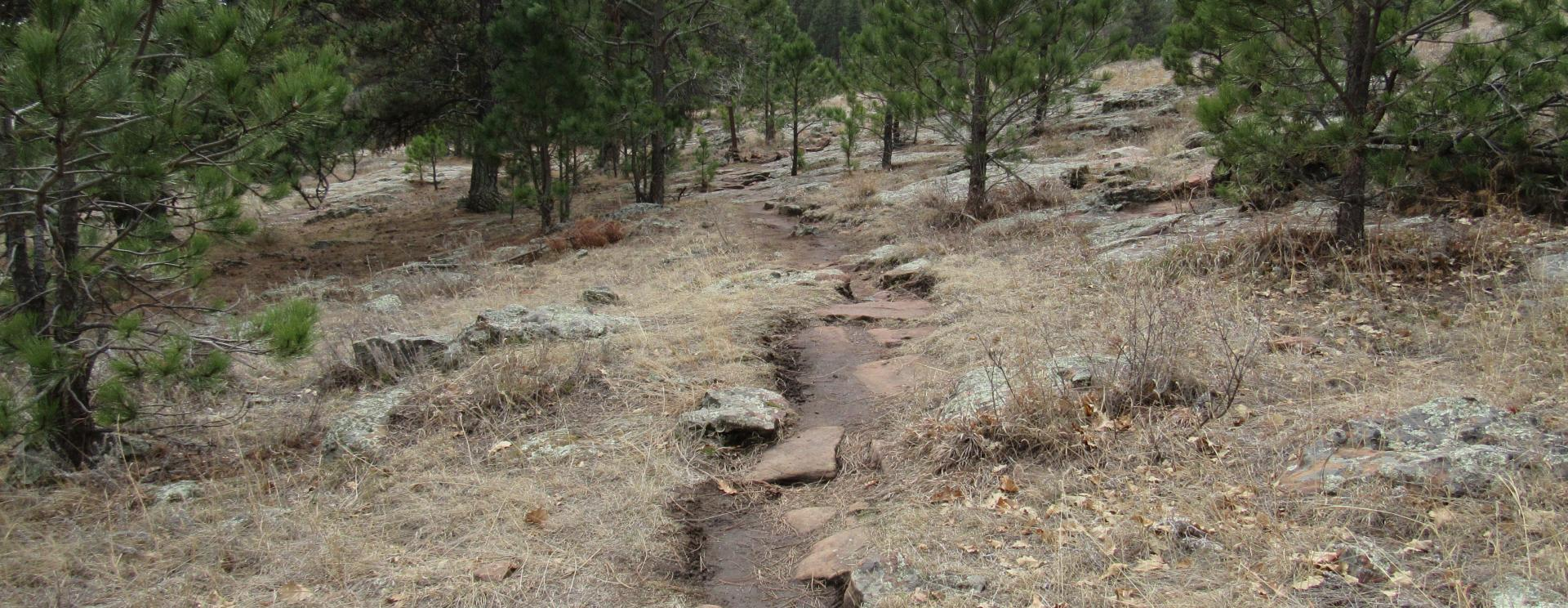 3 Otherworldly Hikes You Can Do in One Day in Custer State Park