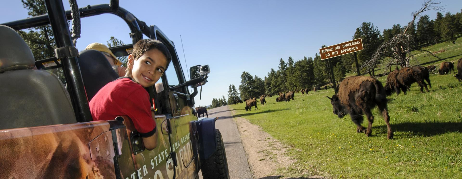 Top 7 Wildlife Experiences Perfect for Young Families in Custer State Park