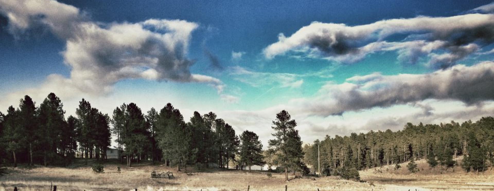 Black Hills Bungalows