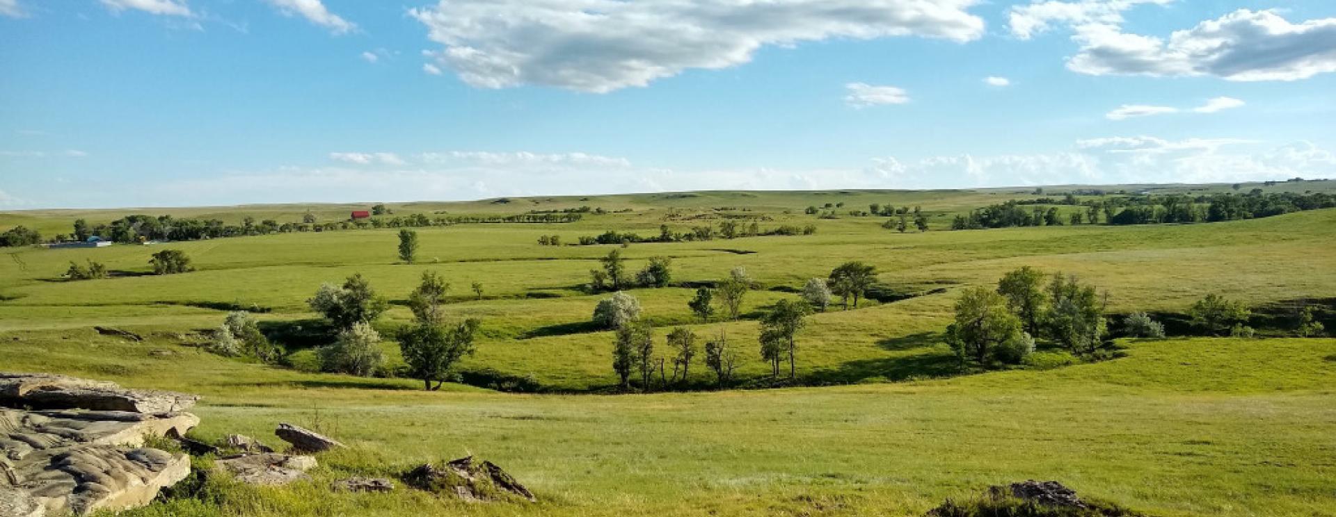 Dennis Ranch
