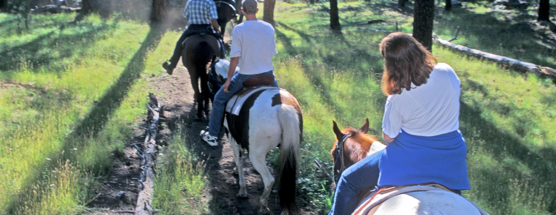 Rockin' R Trail Rides