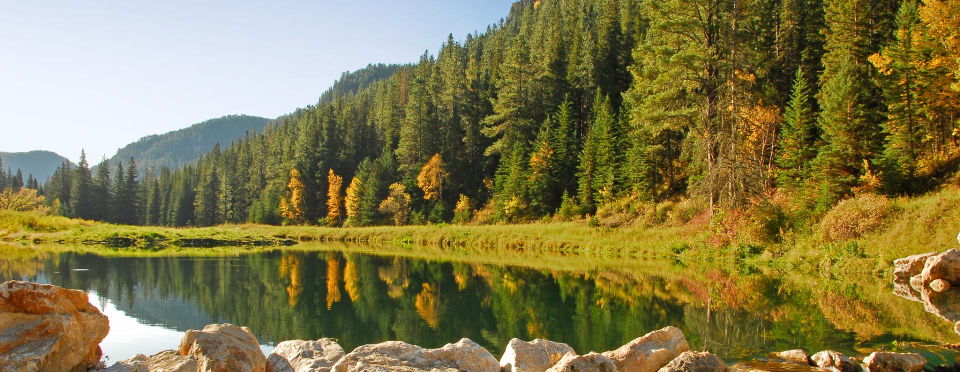 Spearfish Canyon Scenic Byway | Black Hills & Badlands
