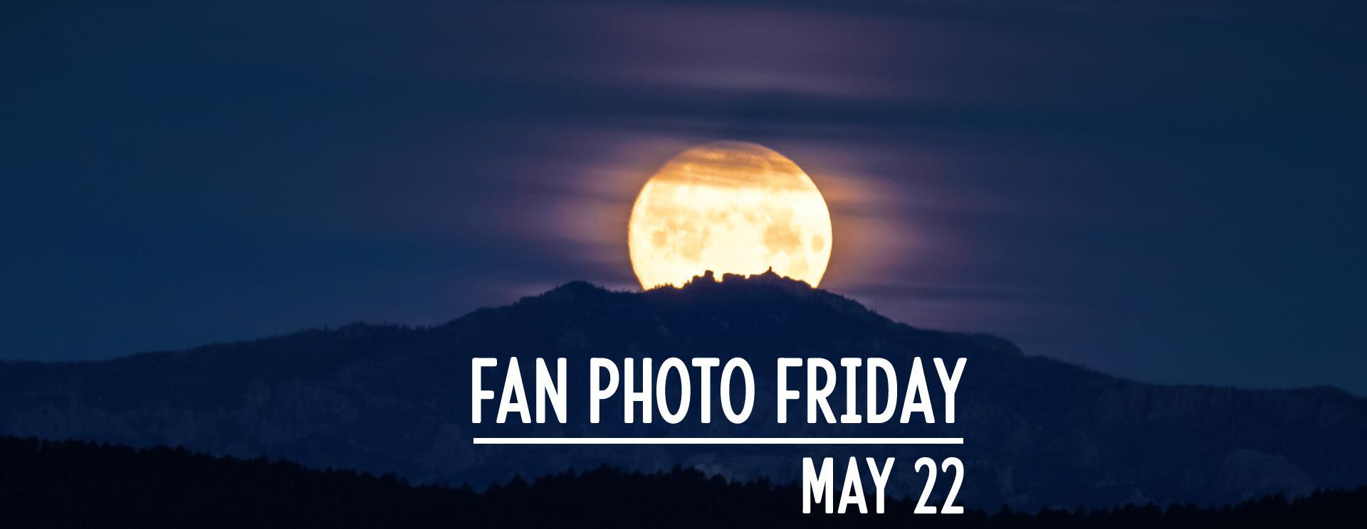Fan Photo Friday   May 22, 2020
