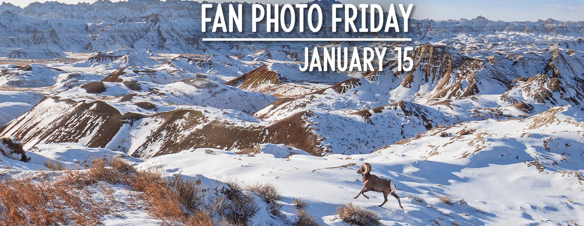 Fan Photo Friday | January 15, 2021
