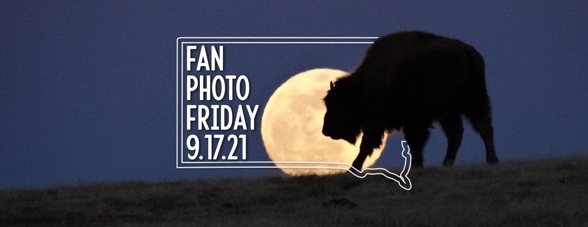 Fan Photo Friday   Sept. 17, 2021