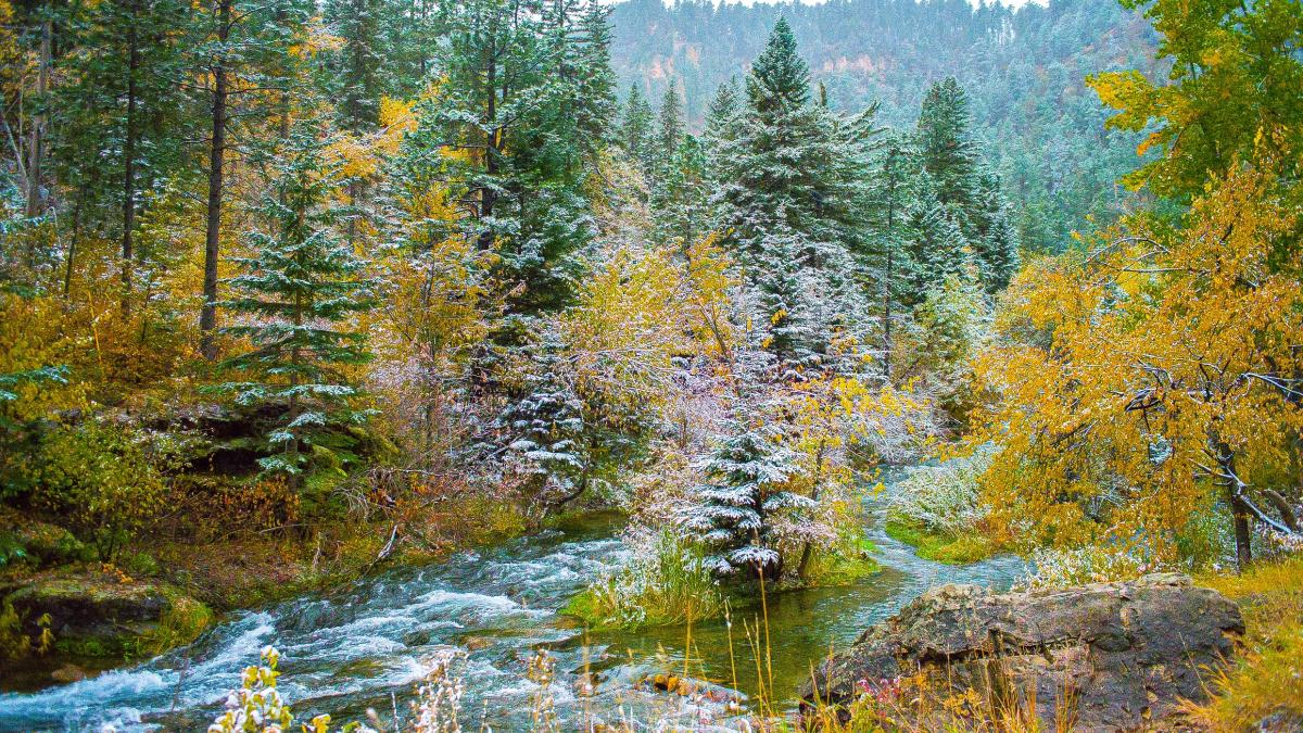 First Snow in Spearfish Canyon