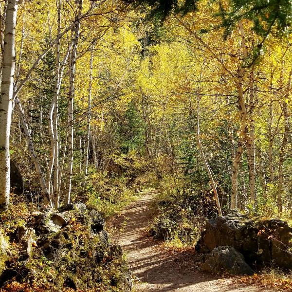 Roughlock trail