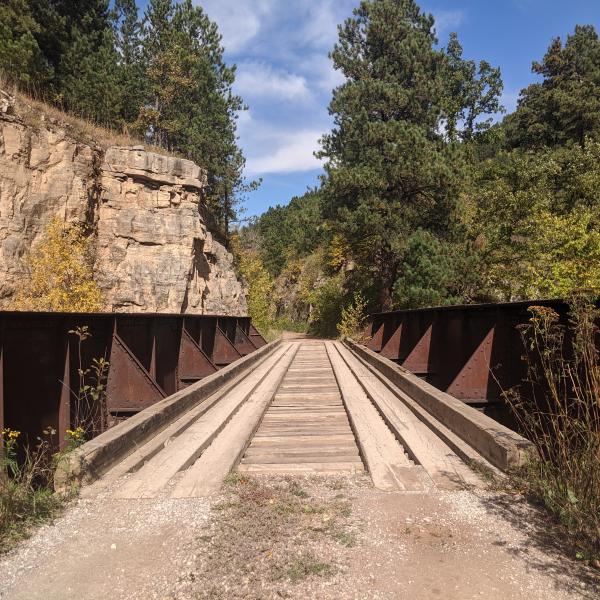 Bridge to the Past