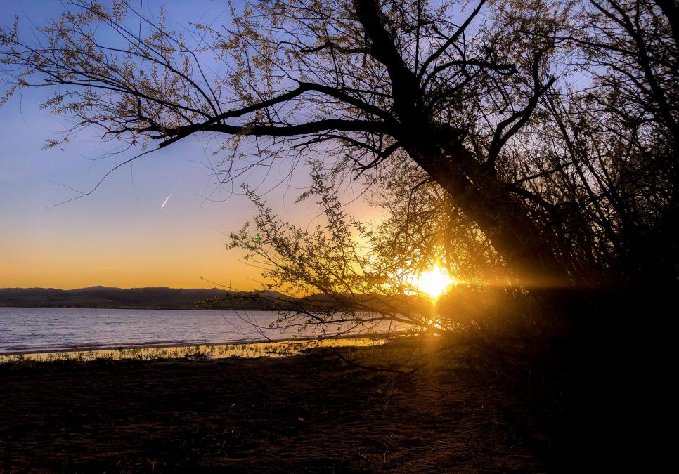 Angostura Sunset