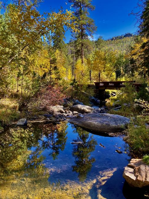 Autumn in Custer on Roads Less Traveled