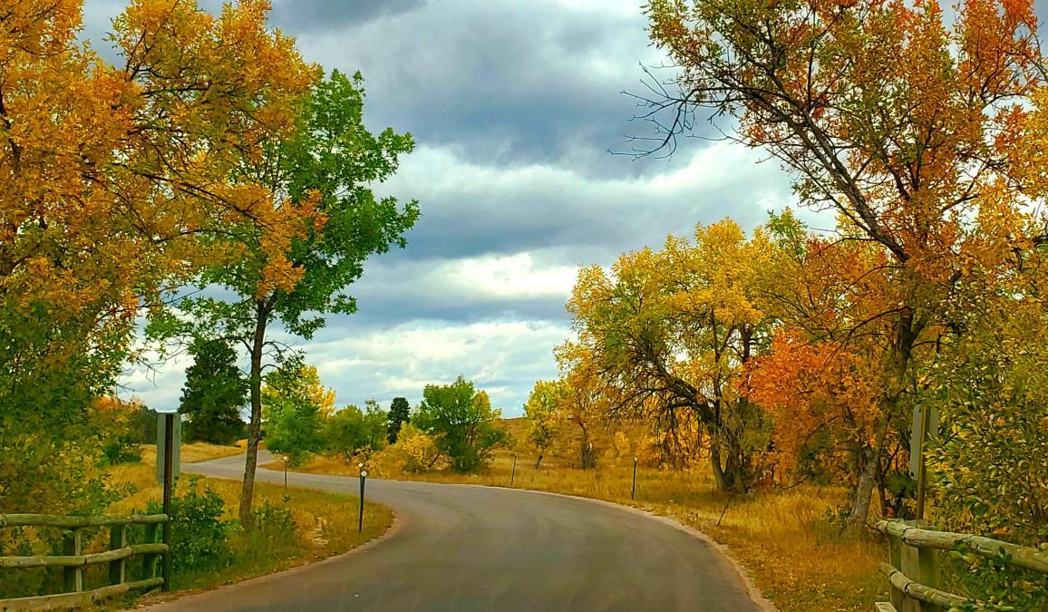 Peace of Fall