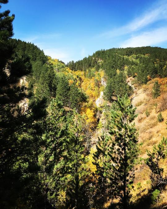 Ogden's Golden Falls