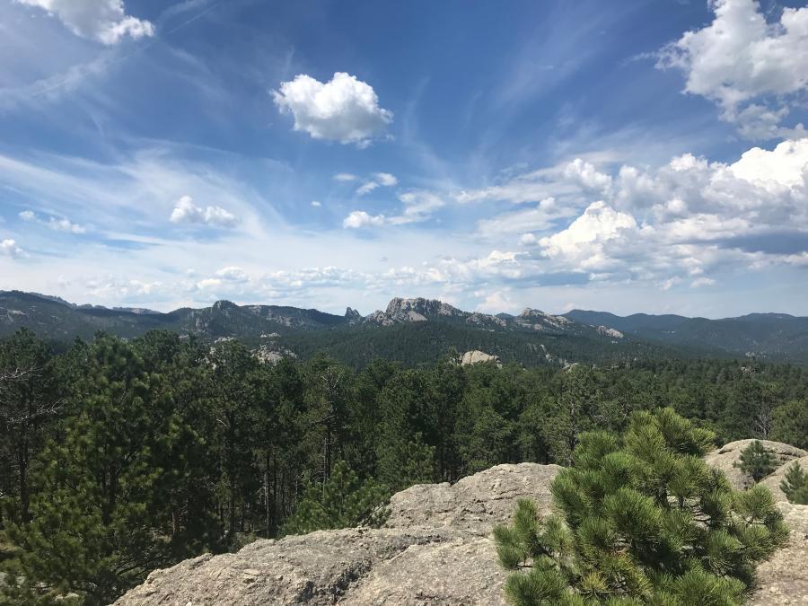 Long Range Rushmore