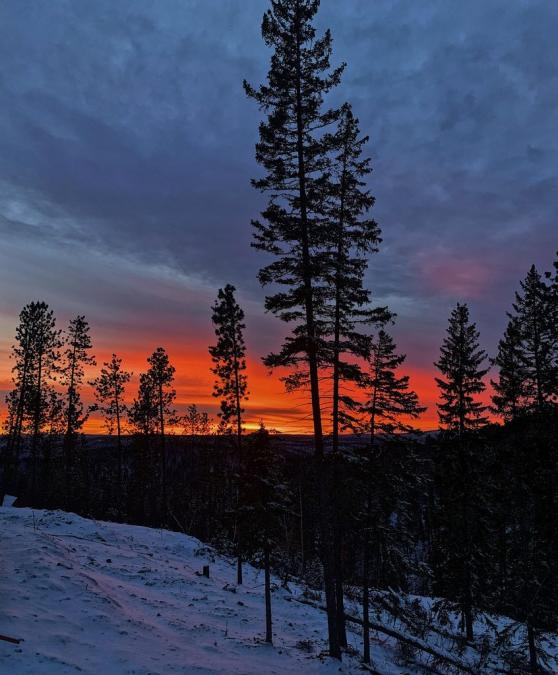 Lead Sunset