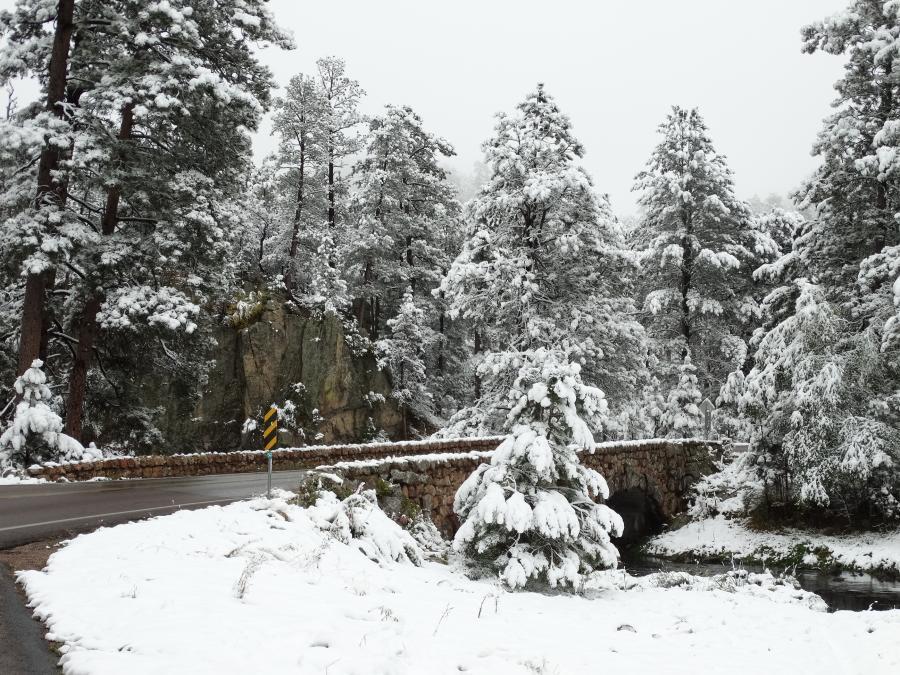 Snow Bridge in Custer State Park