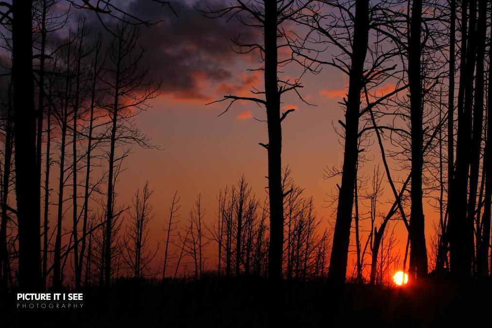 Sunrise in the Burn