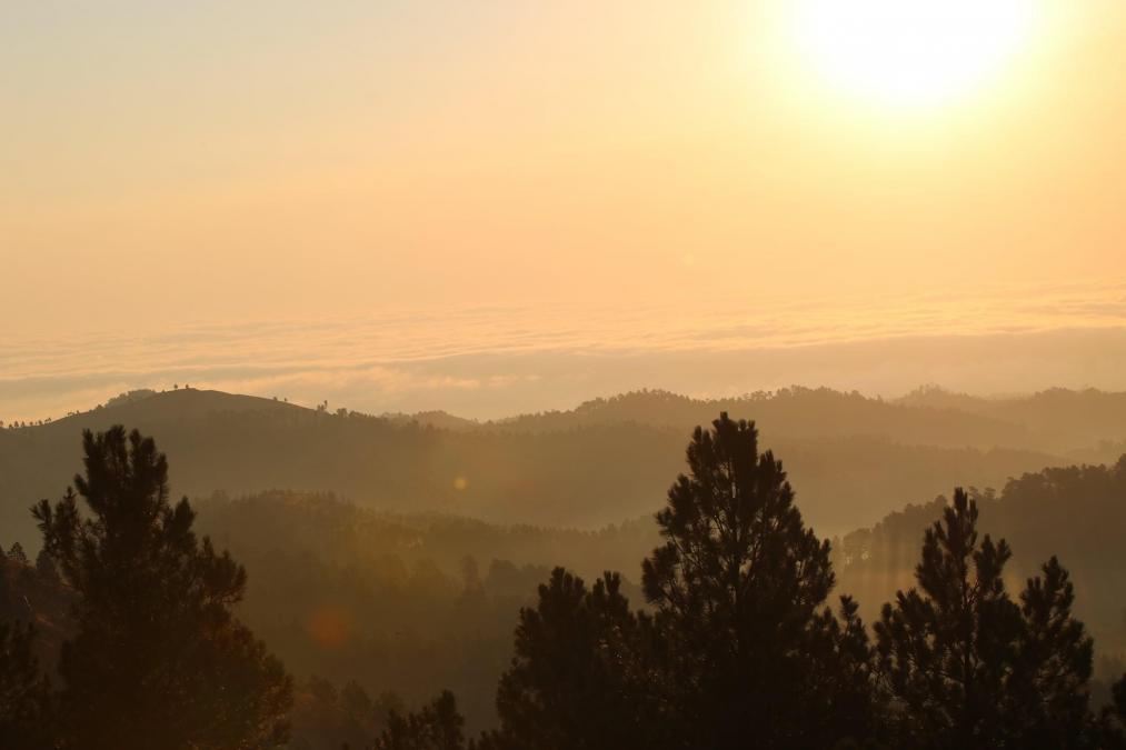 Sunrise Over Custer State Park