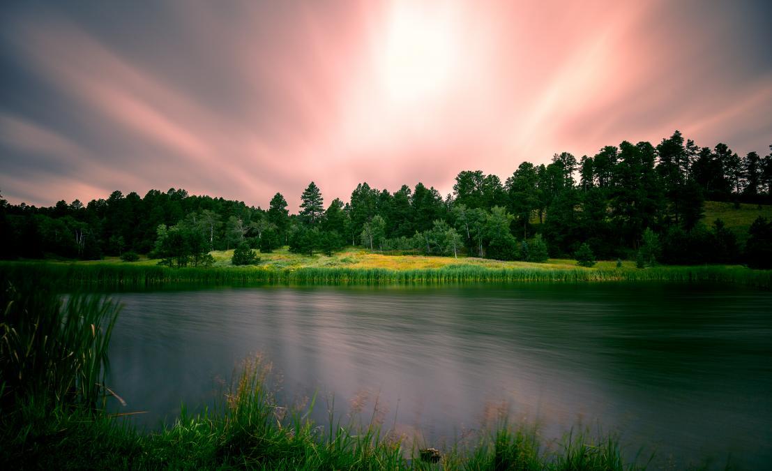 Salmon Colored Skies
