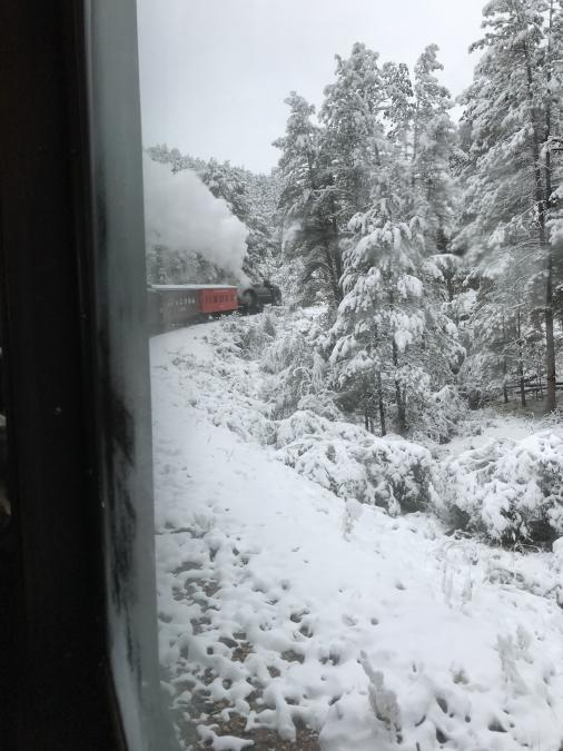 Train Ride in Snowy Black Hills