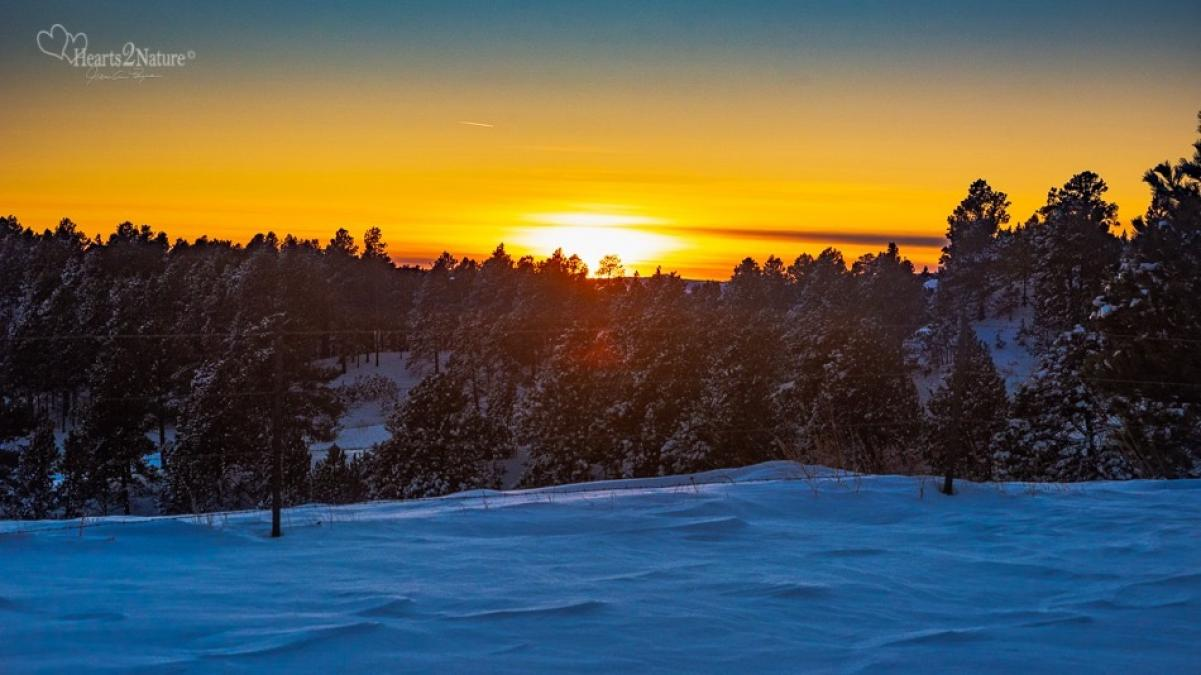 Good Morning 2020 in Northern Black Hills